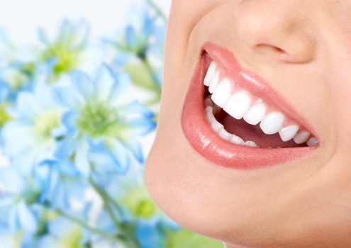 dental03